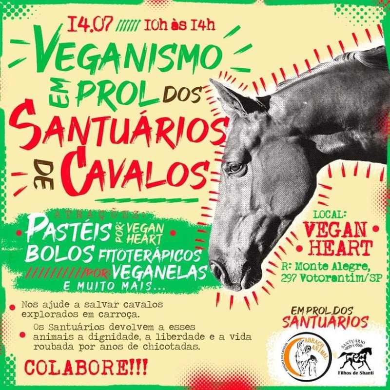 Filhos de Shanti e Abraço Animal realizam eventos em conjunto, em São Paulo e Votorantim, SP